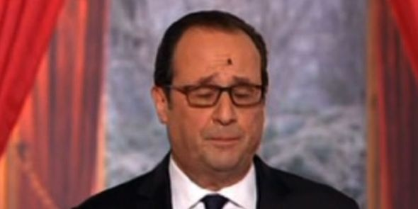 hollande_mouche